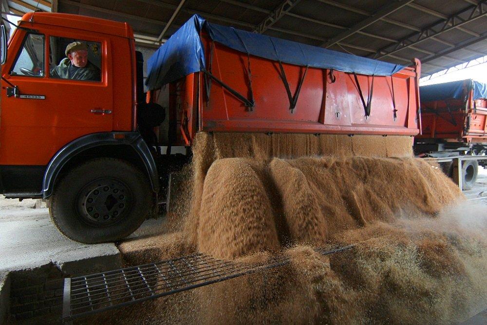 Перевозка зерна как бизнес